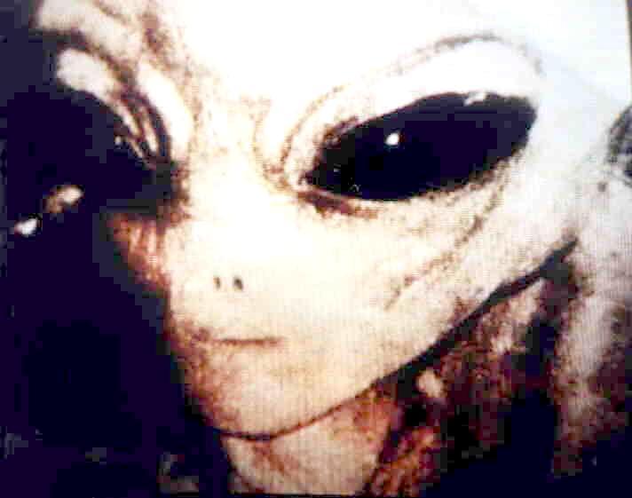 Ciaossu~ I-N-T-R-O desu~ ^^ Jyii~ Disclosure-alien