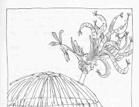 [Roly+Poly+Bird+line+drawing+by+Quentin+Blake.jpg]