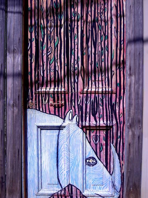 Puerta de la casa de la   Cuidadora del Erizo, Cerro Alegre