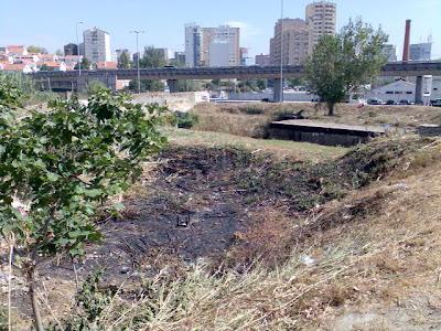 Olivais, Setembro 2009