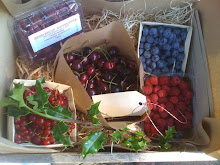 Xmas Berry Box