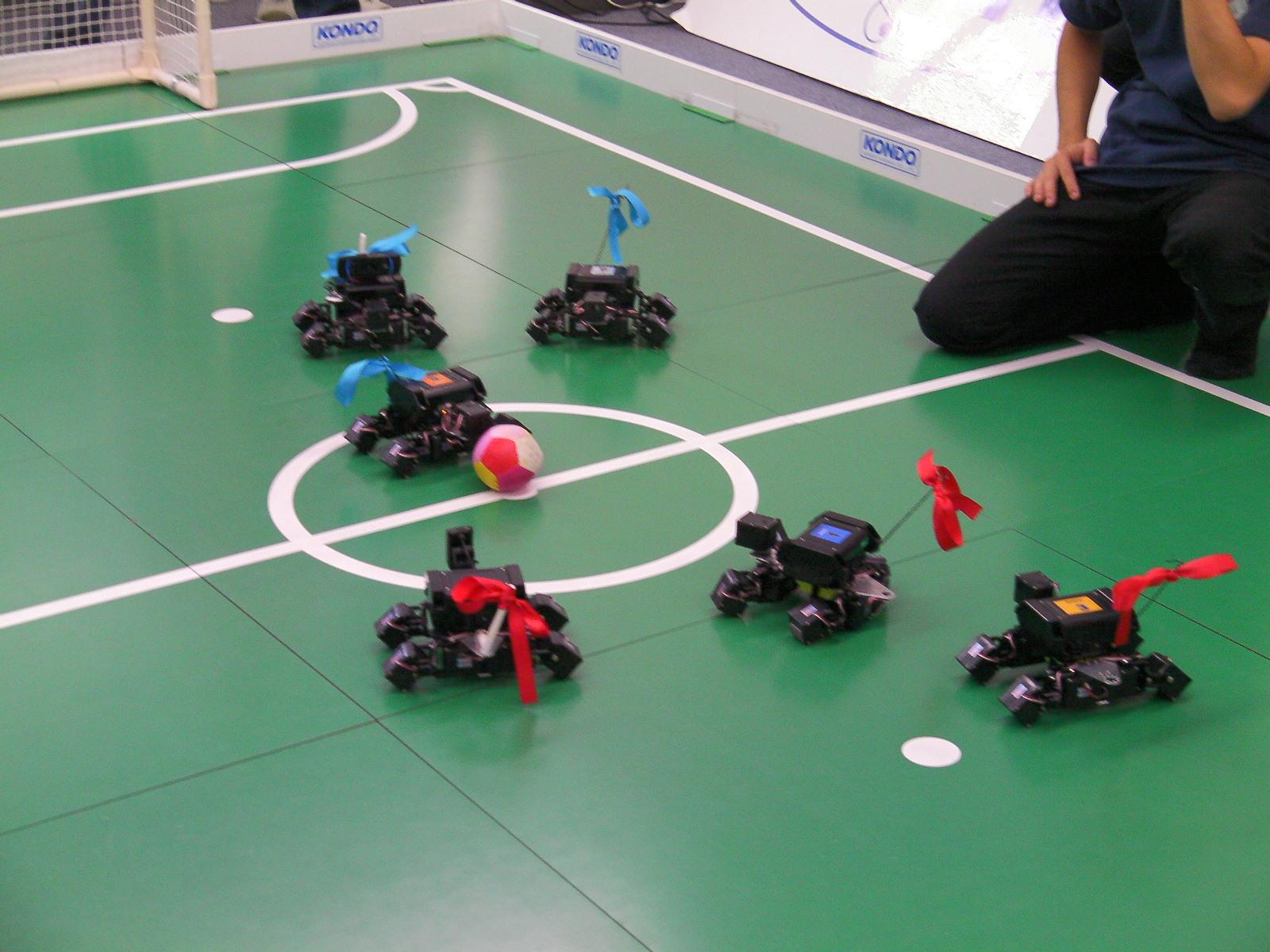 Eğlence amaçlı hobi robotları