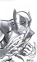 Wolverine by Tony Fleecs (2009)