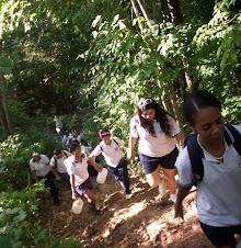 Caminata Cerro Casupo y Riego  de Plantas