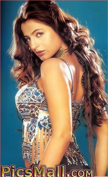 Amisha Patel Sexy pictures, Amisha Patel hot photos | Pussy Hot Images