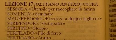OSTRA-OSTRANO ANTICO-17