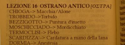 OSTRA,OSTRANO ANTICO 16ma lez.