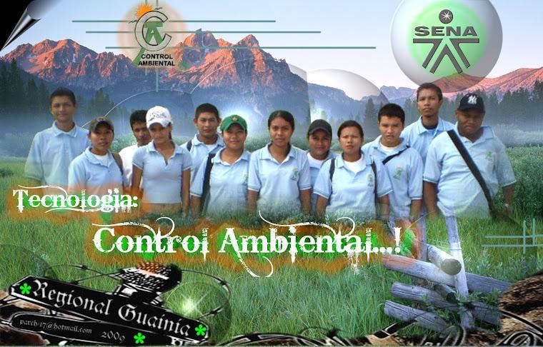 tecnologo en control ambiental