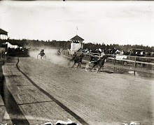 Trotting at the Belfast Fairgrounds