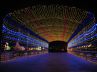 Tunnel of Light at Del Mar Fairgrounds