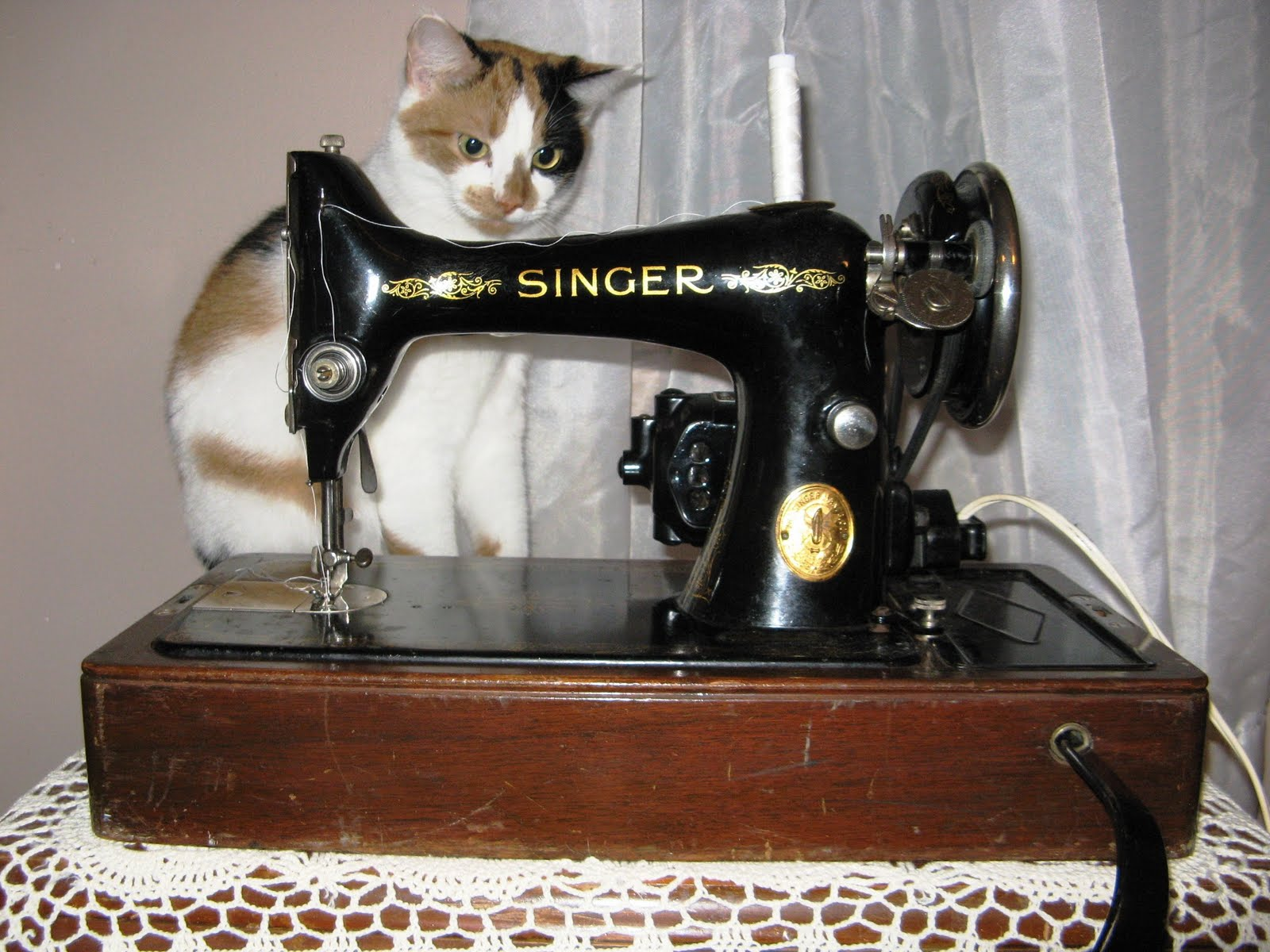 The Napping Quilter: Old Singer Sewing Machine