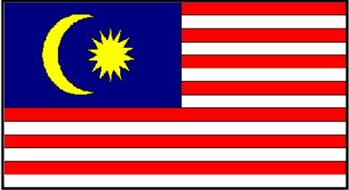 Pada 15/11/1949, jawatankuasa ini telah terima 373 rekabentuk bendera