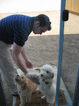 My Hubby and Our Pups