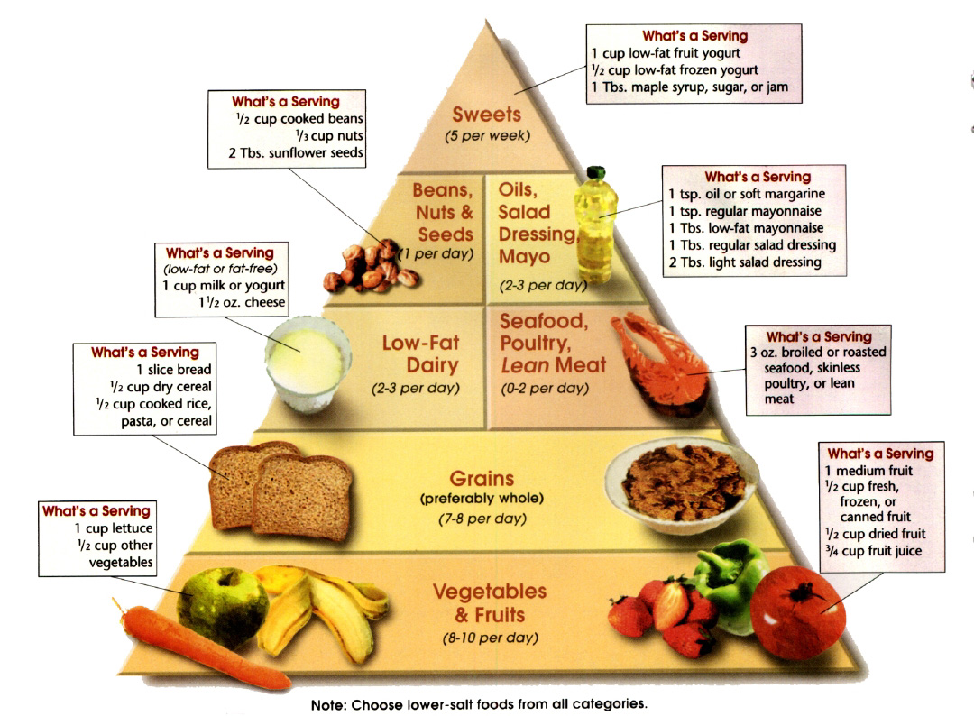 Balance Diet. The Components