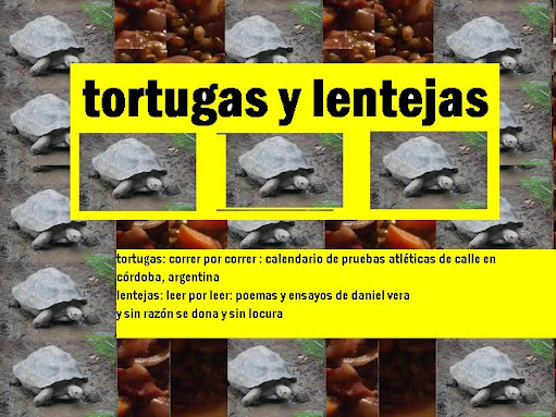tortugas y lentejas