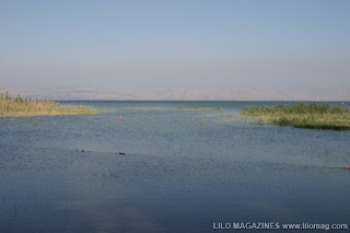 Sea-of-Galilee3