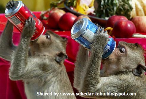 http://3.bp.blogspot.com/_6wWAvMOB4eQ/TK6SsmoANxI/AAAAAAAACus/jitxtVyLJc0/s1600/untitled.JPG