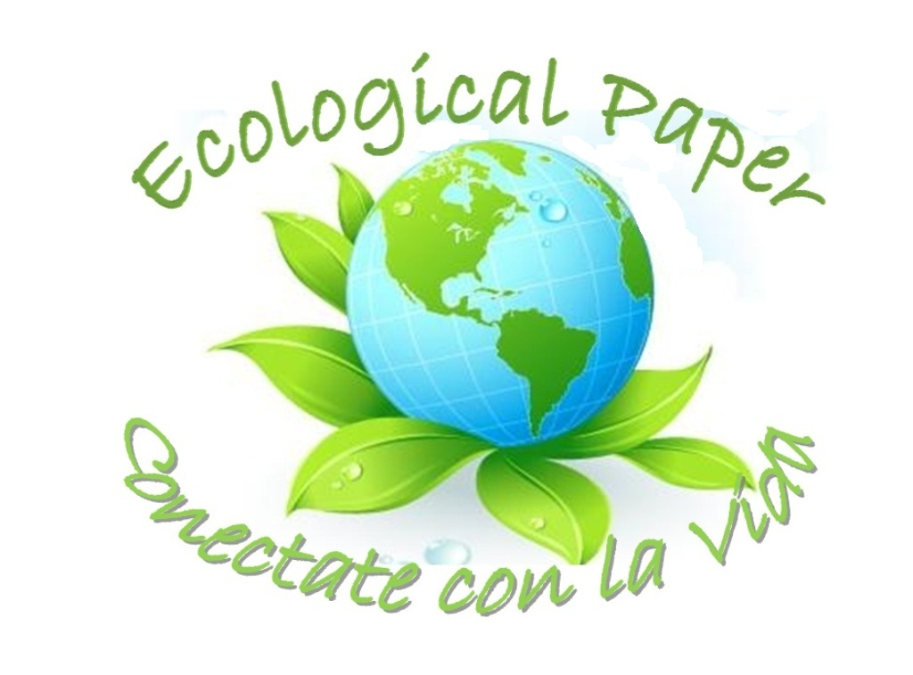 Ecological Footprint Essay What Is This Concept All About by ...