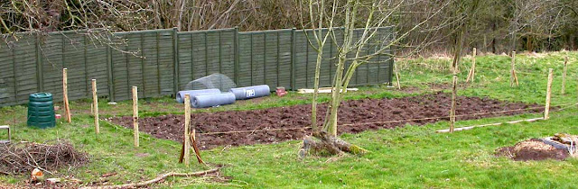 Putting up post and wire fence around vegetable garden.