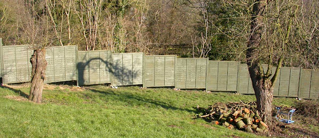 Panel fencing painted in Old English green.