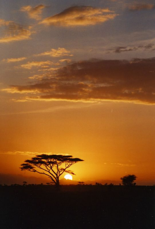 Planeta en peligro cuidemosle junio 2010 for Puesta de sol