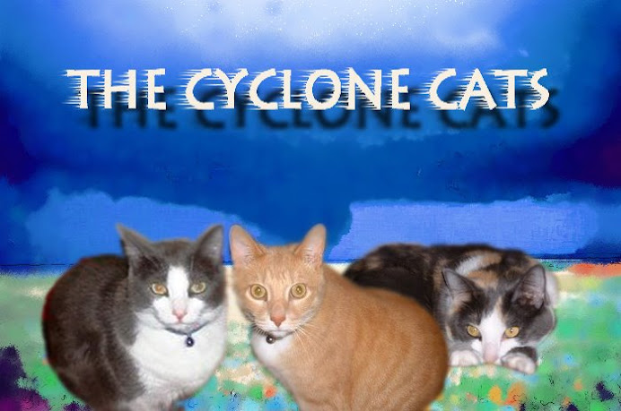 The Cyclone Cats!