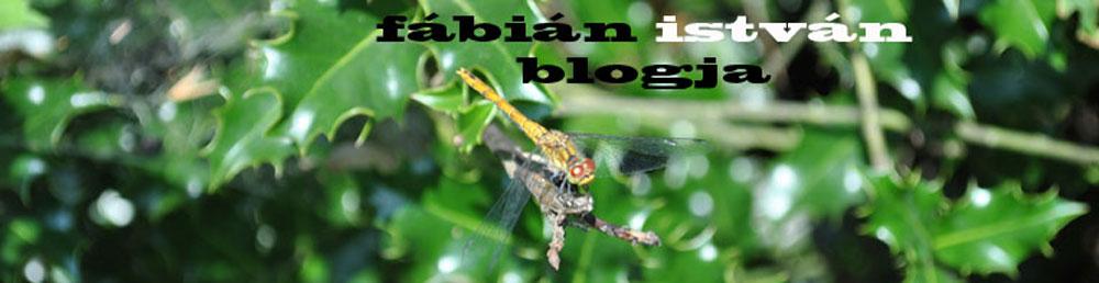 fábián istván blogja