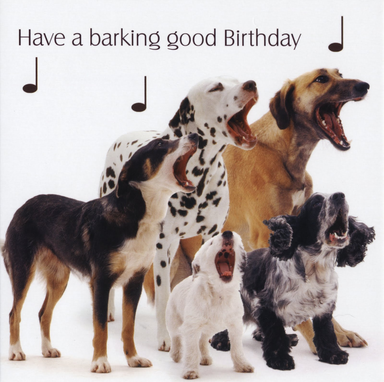 Birthday Ecards Dogs Singing ~ Birthday quotes from dogs quotesgram