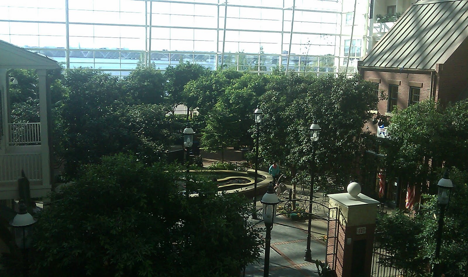 View from Our Room: Gaylord National Hotel, Washington DC
