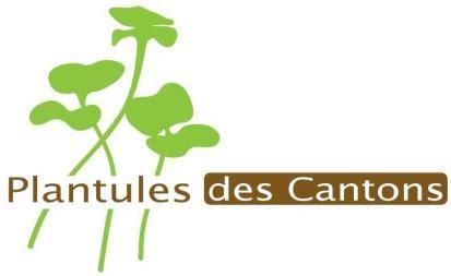 PLANTULES DES CANTONS