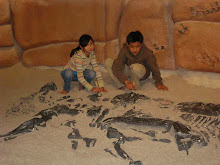 Anthony and Ariel excavated for dinosaur fossils.