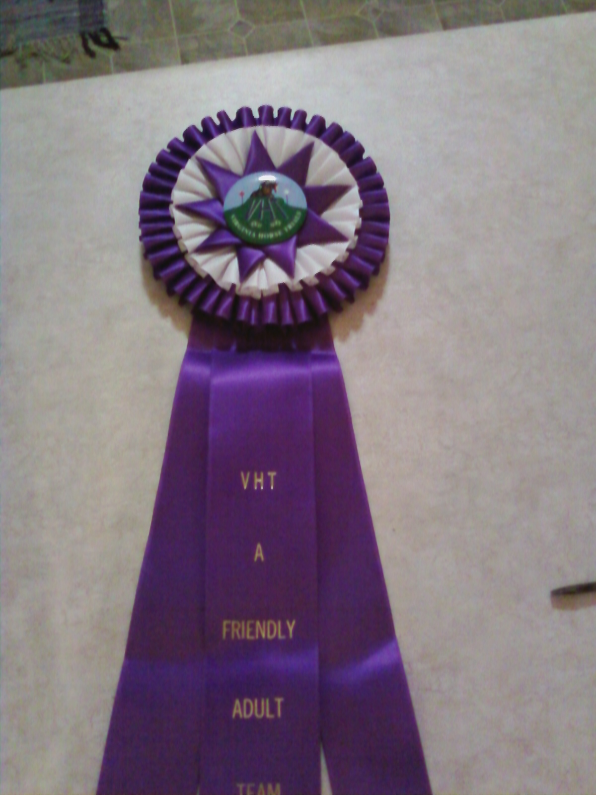 Beautimous giant purple ribbon, apparently our final placing in the Adult ...