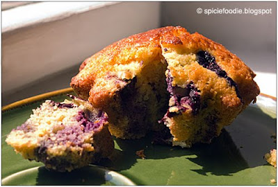 blueberry corn muffin,corn muffins