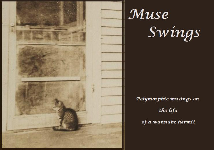 Muse Swings