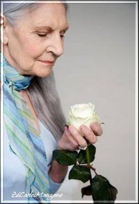 COMPTE_BLOGOF vivendo : Expressando Emo��es, Uma mensagem escrita por uma senhora de 90 anos- Vale a pena ler!!!!
