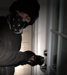 Protect your Property from Criminals