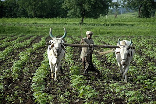 Rural India, from Business Week