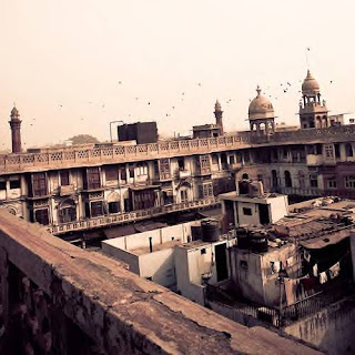 Delhi Rooftops, by Ryan Opaz