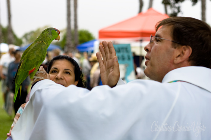 Long Beach Blessing of the Animals