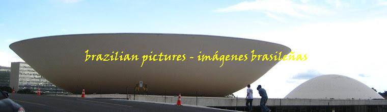 brazilian pictures/imágenes brasileñas