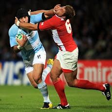 Rugby. Web de los Pumas