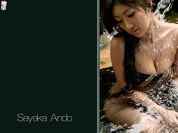 Sayaka Ando Wallpaper 1024x768