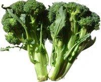 Sayur Segar Kundasang Sedap dan Berkhasiat