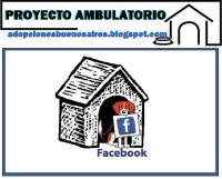PROYECTO AMBULATORIO FACE