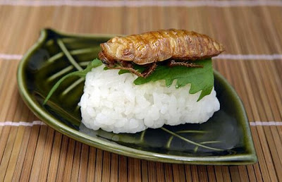 The national guard association of the united state japanese weird japanese weird food insect sushi forumfinder Images