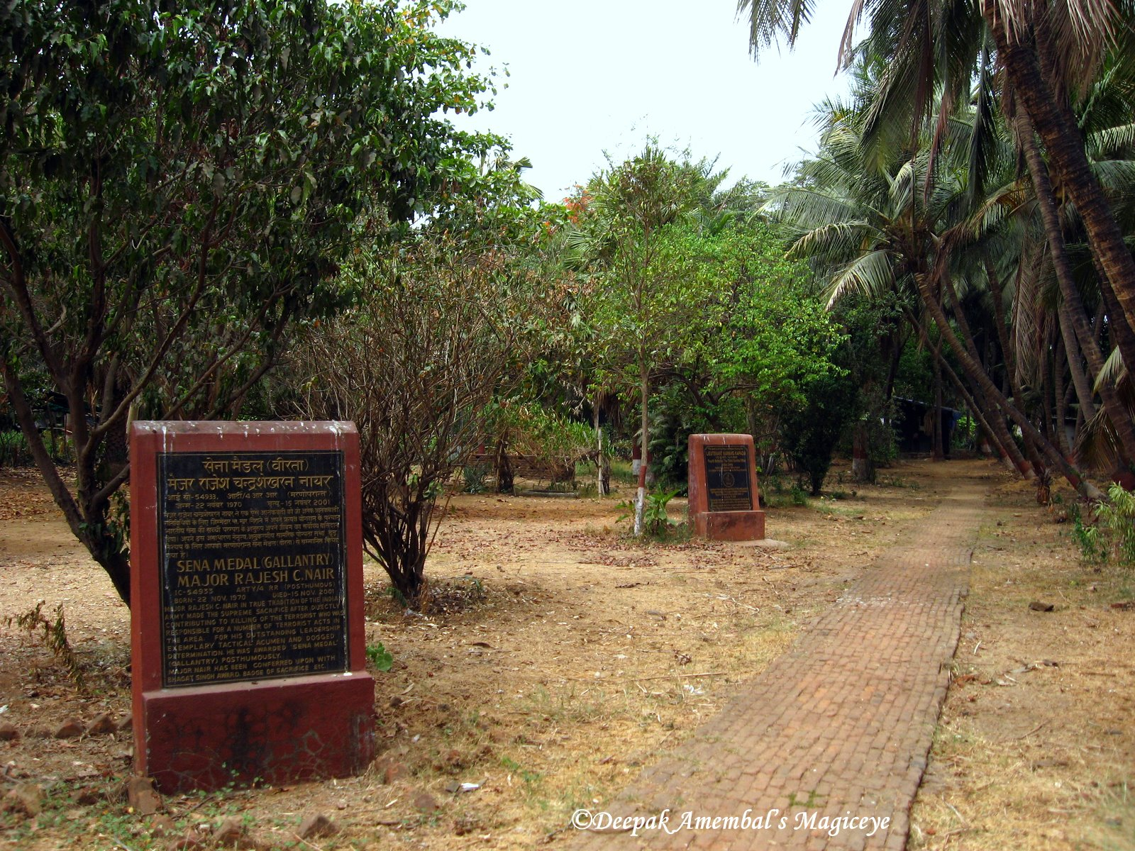 Mahim Nature Park Importance Of Project