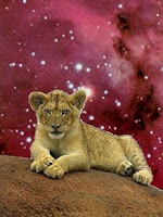 Leo Cub of the Galaxy
