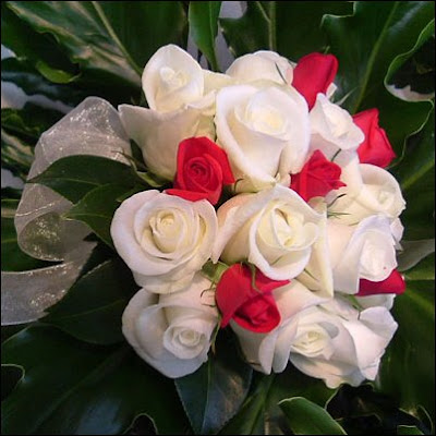 http://3.bp.blogspot.com/_7GD7X-ixbd0/SNyImQazEzI/AAAAAAAAAGw/JhF3n1SOBPg/s400/bunga+rose.jpg