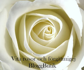 Butik Vita rosor och frgtmigej
