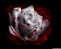My Bloody White Rose, Inconspicuously Placed, With Her Emotionless Glow.